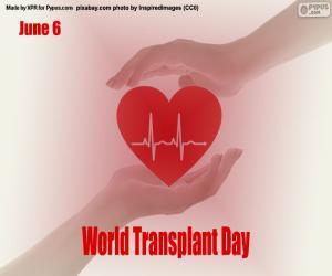 puzzel Wereldtransplantatiedag