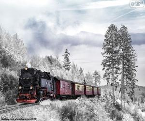 puzzel Winter trein