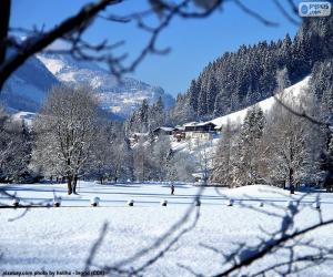 puzzel Winterlandschap