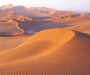 puzzel Woestijnlandschap