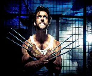 puzzel Wolverine is een mutant superheld en een van de X-Men mier de New Avengers