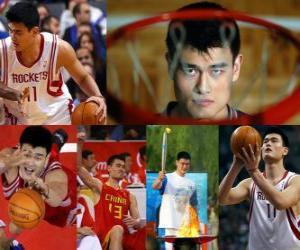 puzzel Yao Ming met pensioen gaat van professionele basketball (2011)