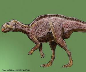 puzzel Zalmoxes 65 miljoen jaar geleden leefde