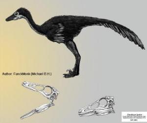 puzzel Zanabazar is een van de grootste bekende troodontids, met een schedel van 272 mm