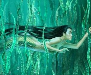 puzzel Zeemeermin zwemmen tussen het zeewier