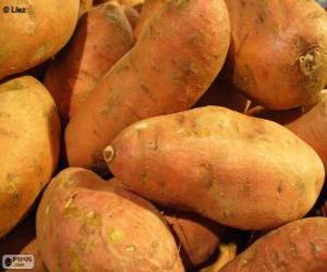 puzzel Zoete aardappel of bataat