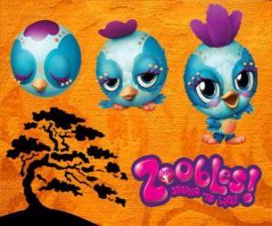 puzzel Zooble kleine vogel uit Petagonia