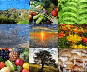 Natuur leguzzels